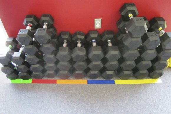 Dumbbells from Athletic Lab fitness and sport performance training facility