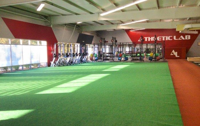 Athletic Lab-turf