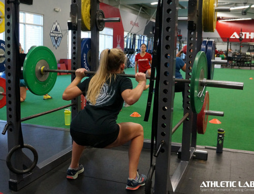 Hamstring Strength and Flexibility Following a Strain by Vincent Ragland