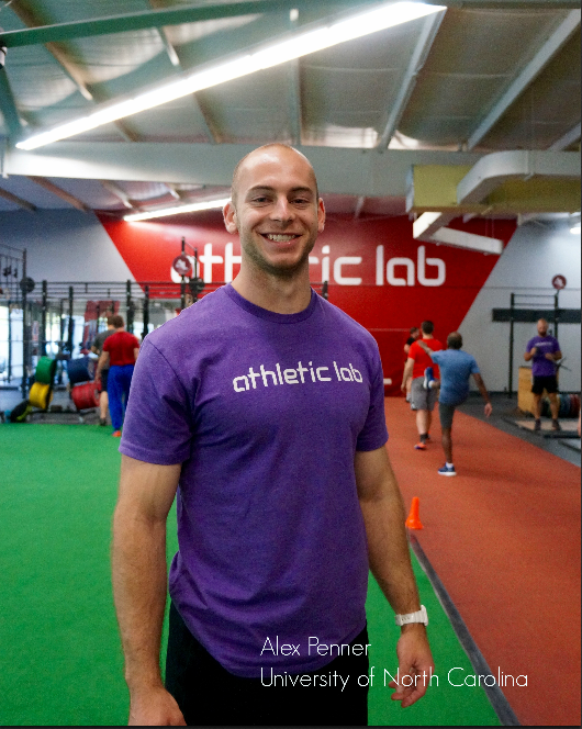 Alex hill forex mentorship