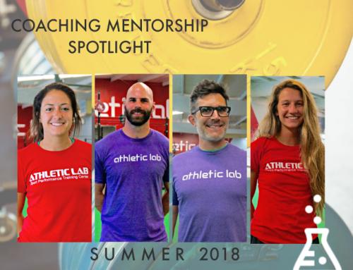 Summer Mentorship Spotlight
